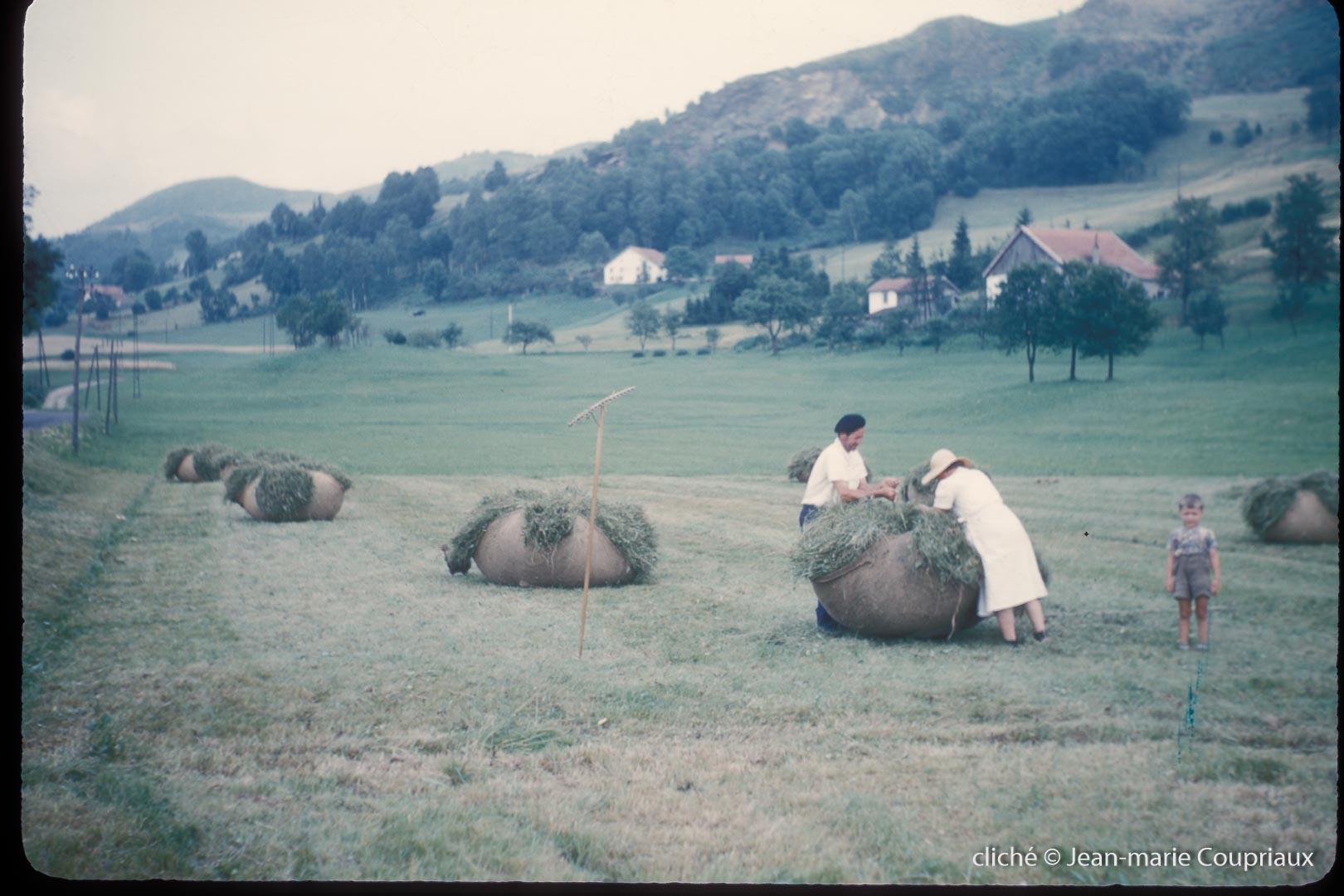 1960-Vosges-foins-1