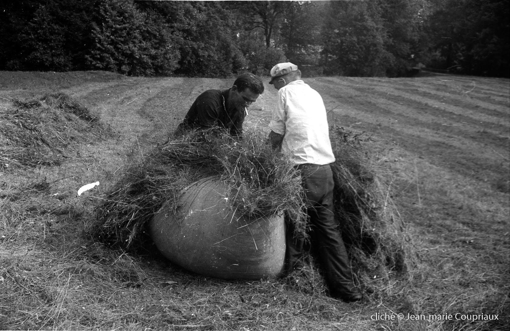 1962_agri-foins-1