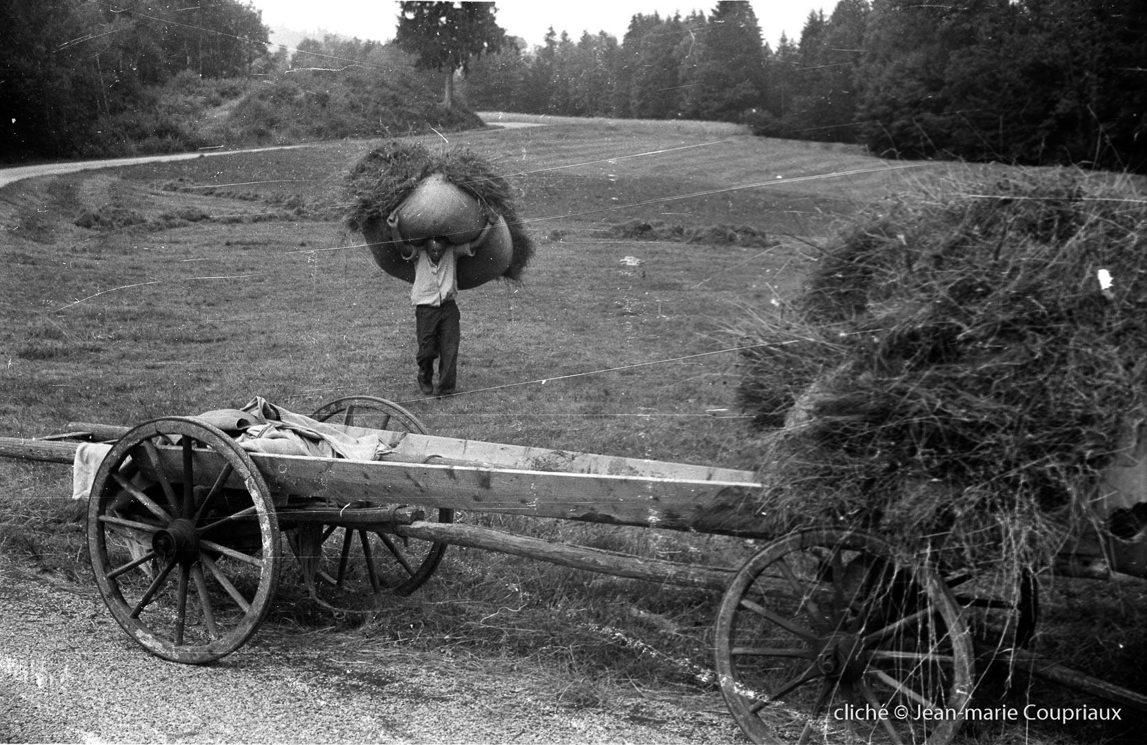 1962_agri-foins-4