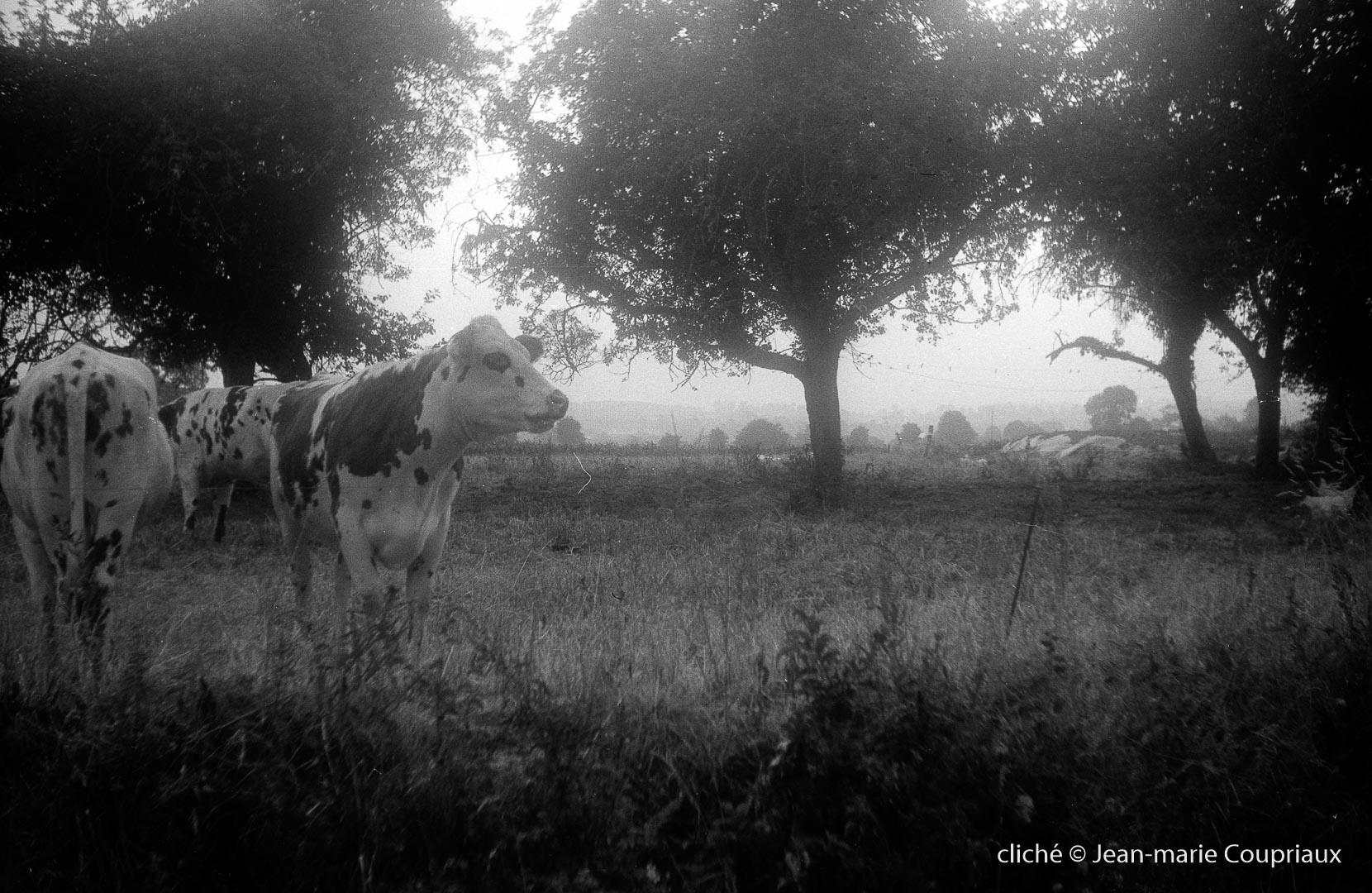 1976_fam-Bretagne-332