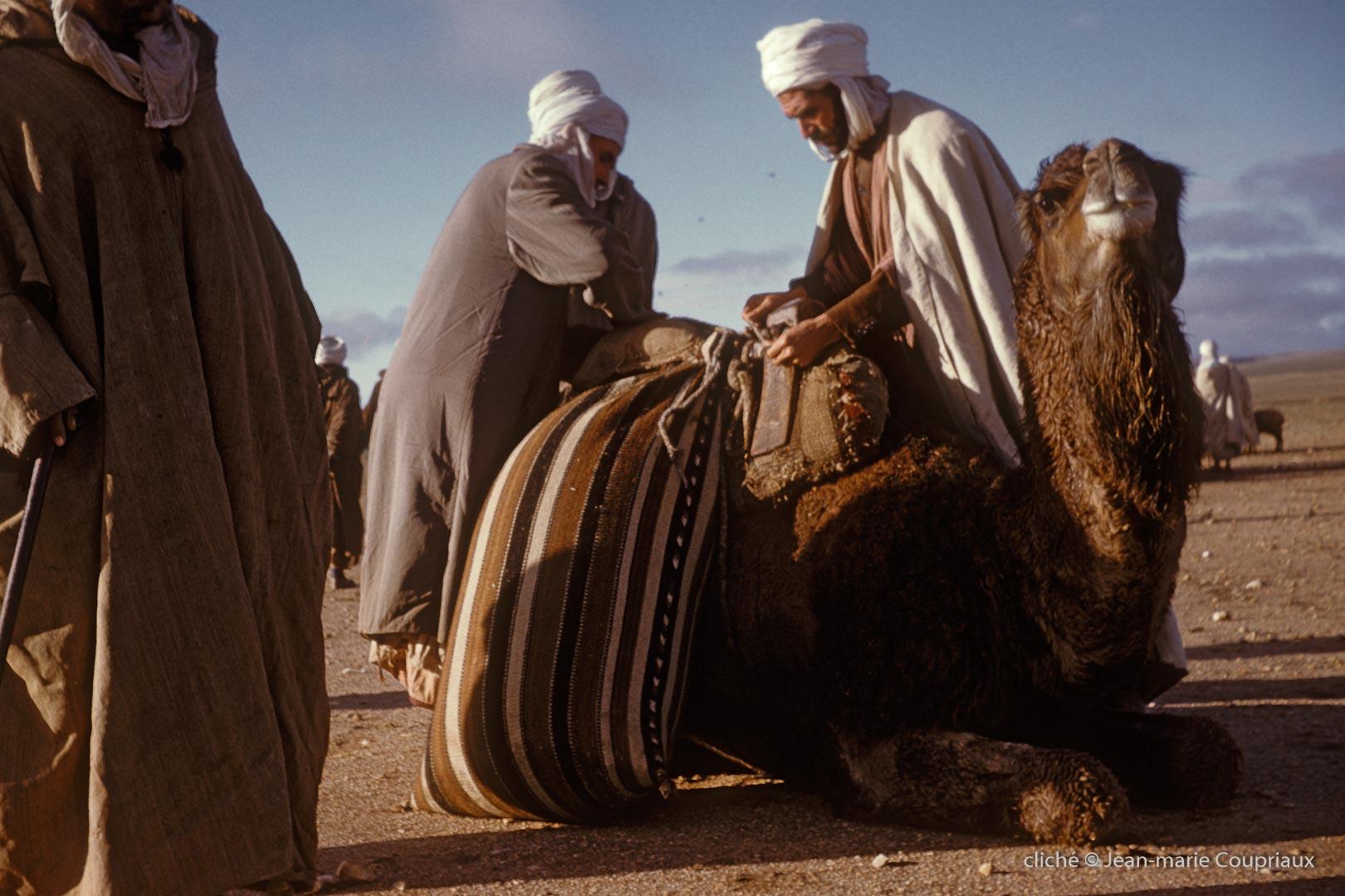 311-1958_Algerie-146