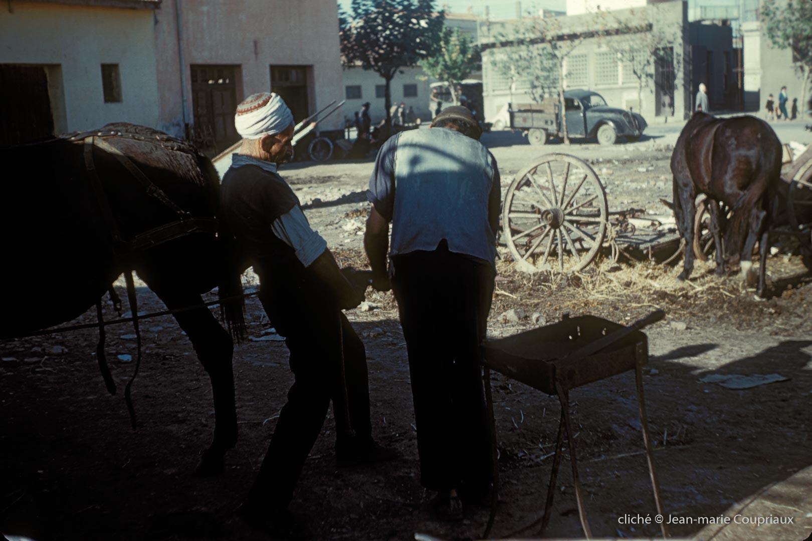 311-1958_Algerie-197