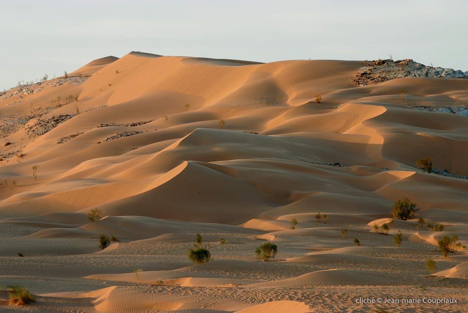 602-2007_Algerie-210