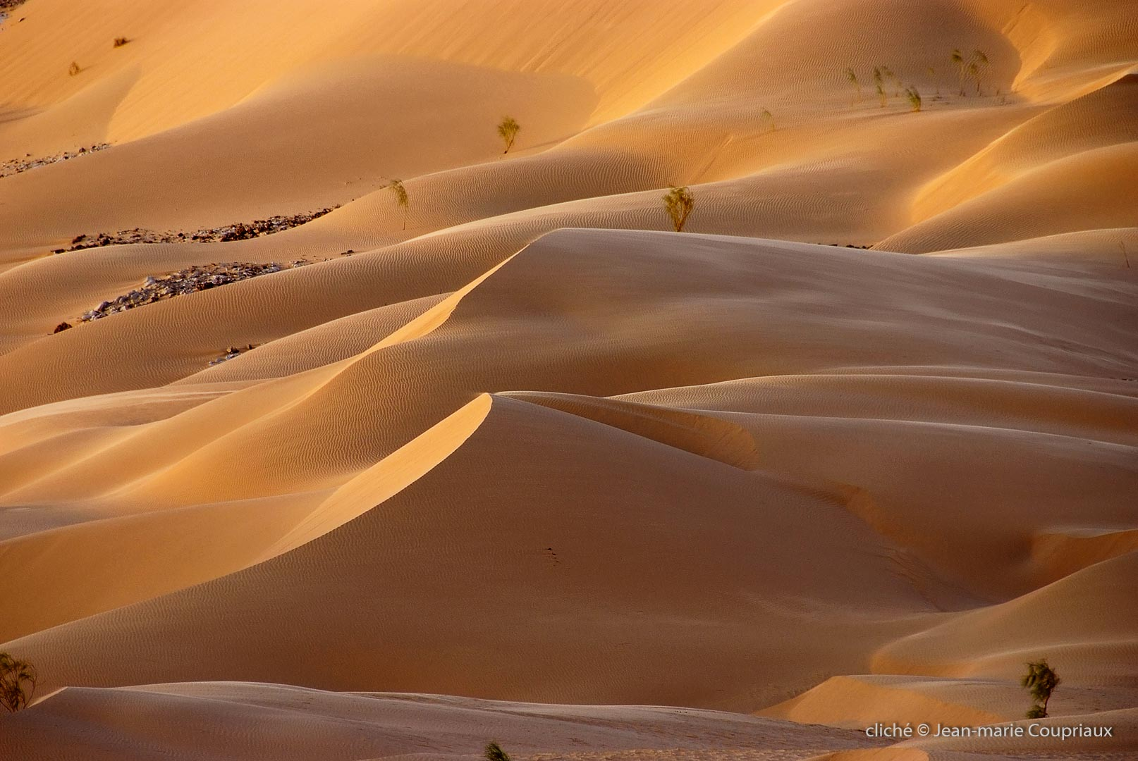 602-2007_Algerie-217