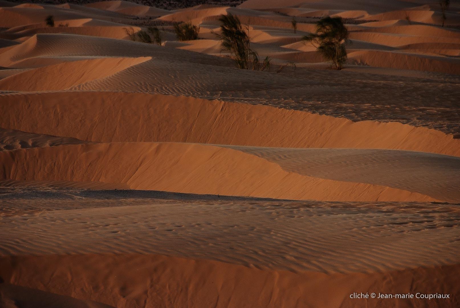 602-2007_Algerie-218