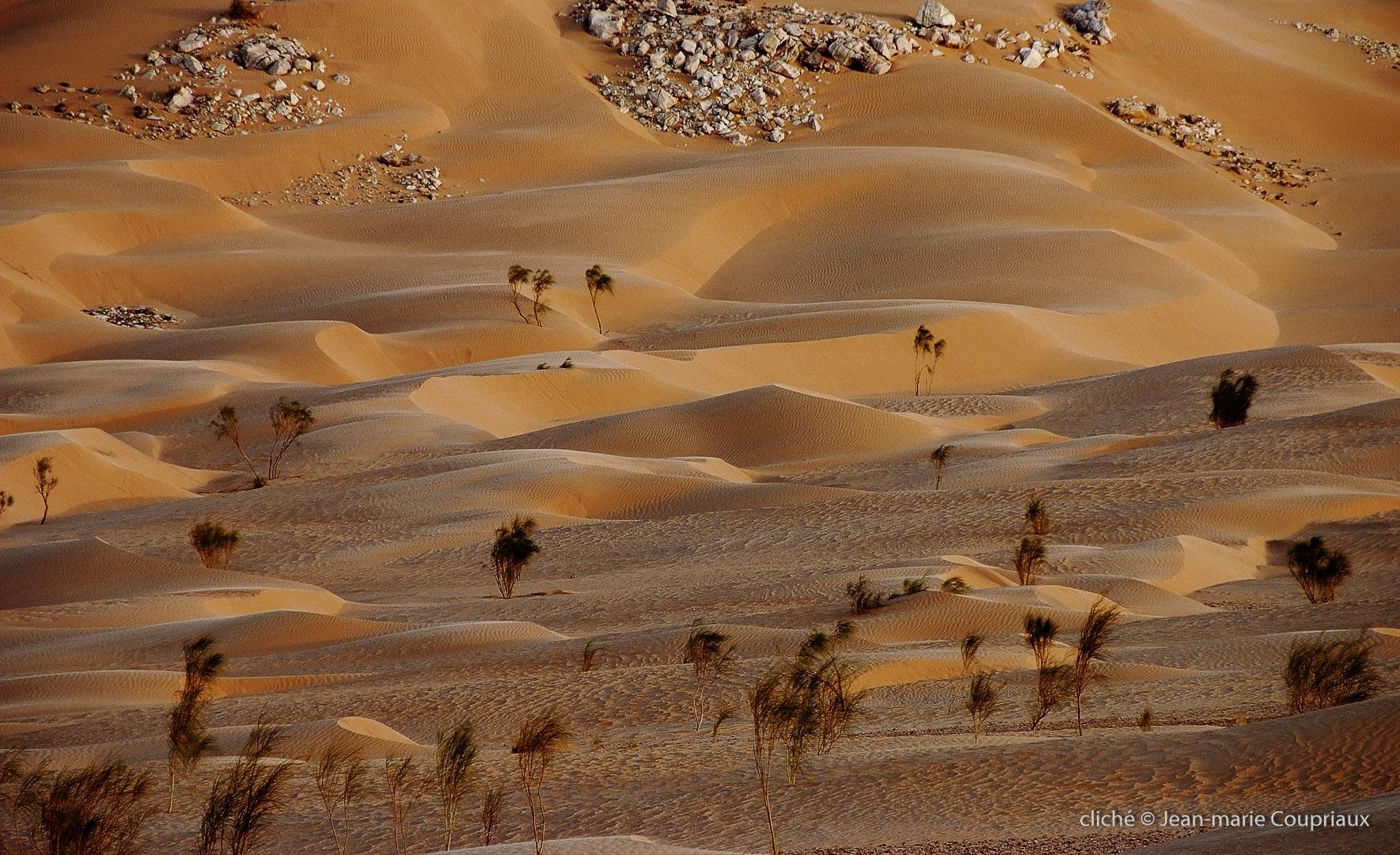 602-2007_Algerie-219