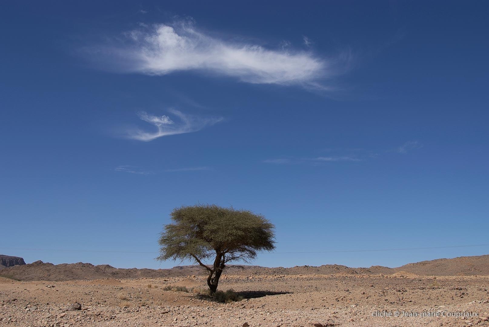602-2007_Algerie-584