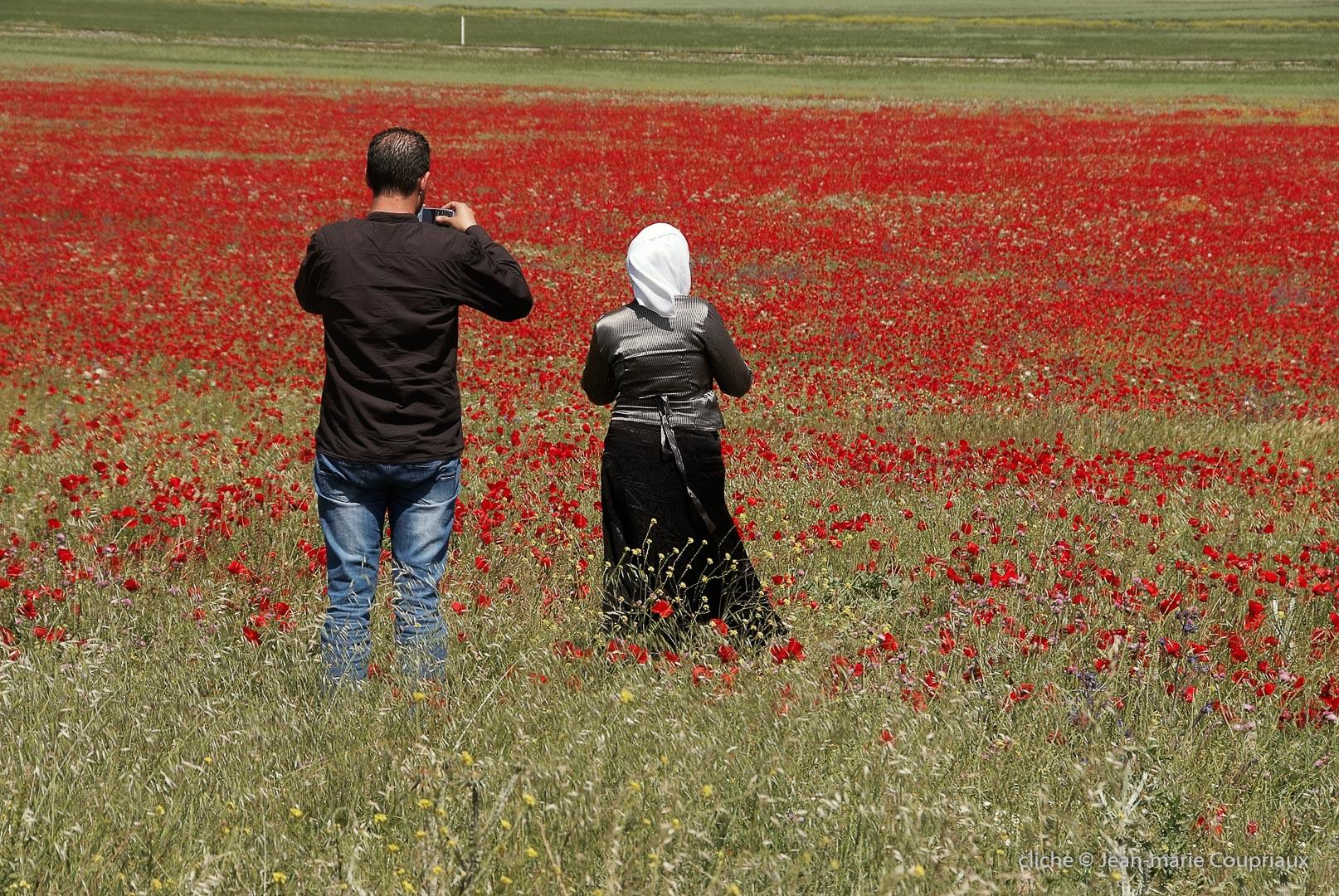802-2011_Algerie-1153