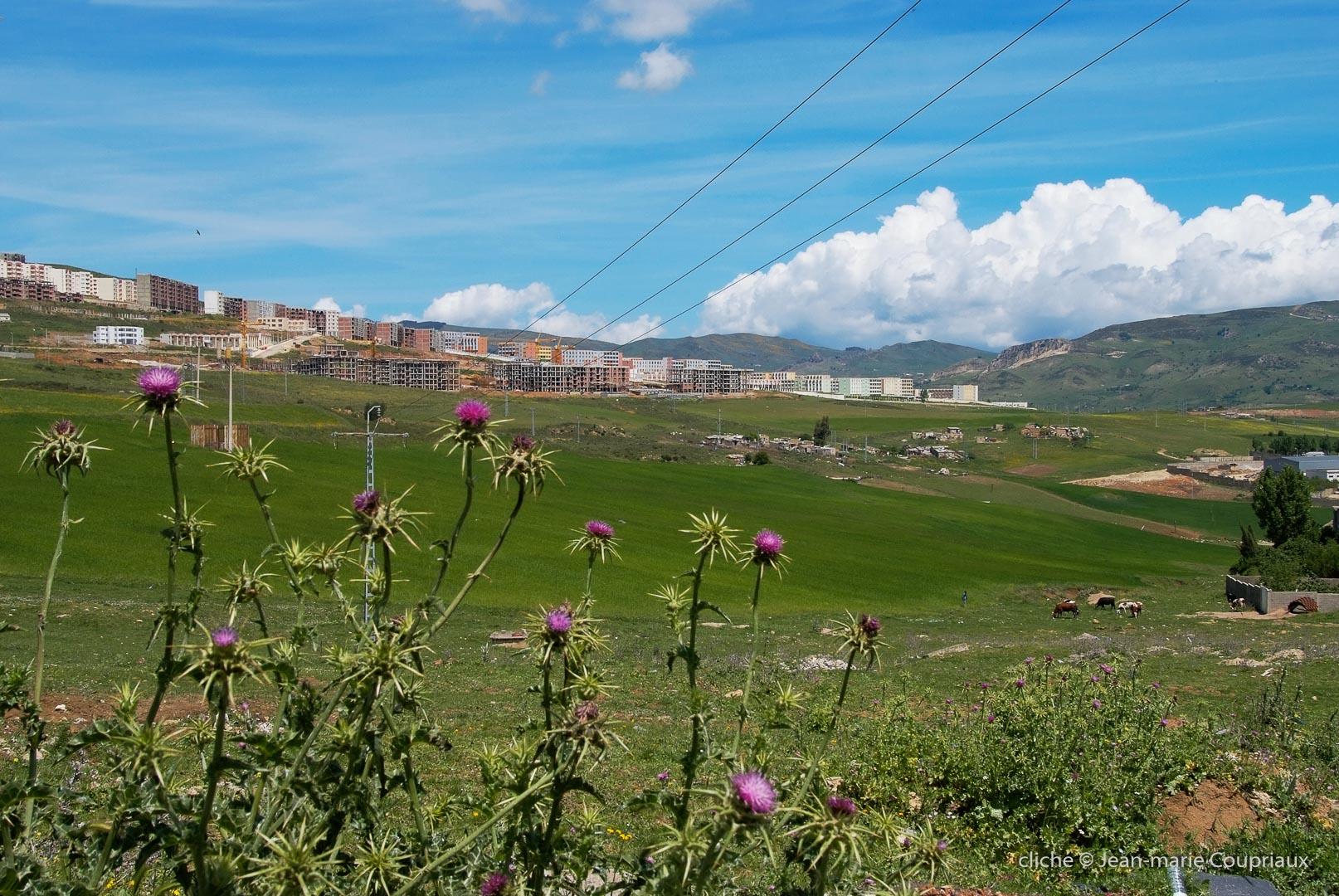 802-2011_Algerie-275