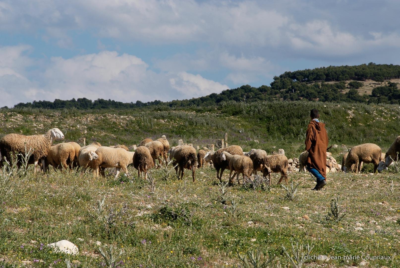 802-2011_Algerie-324