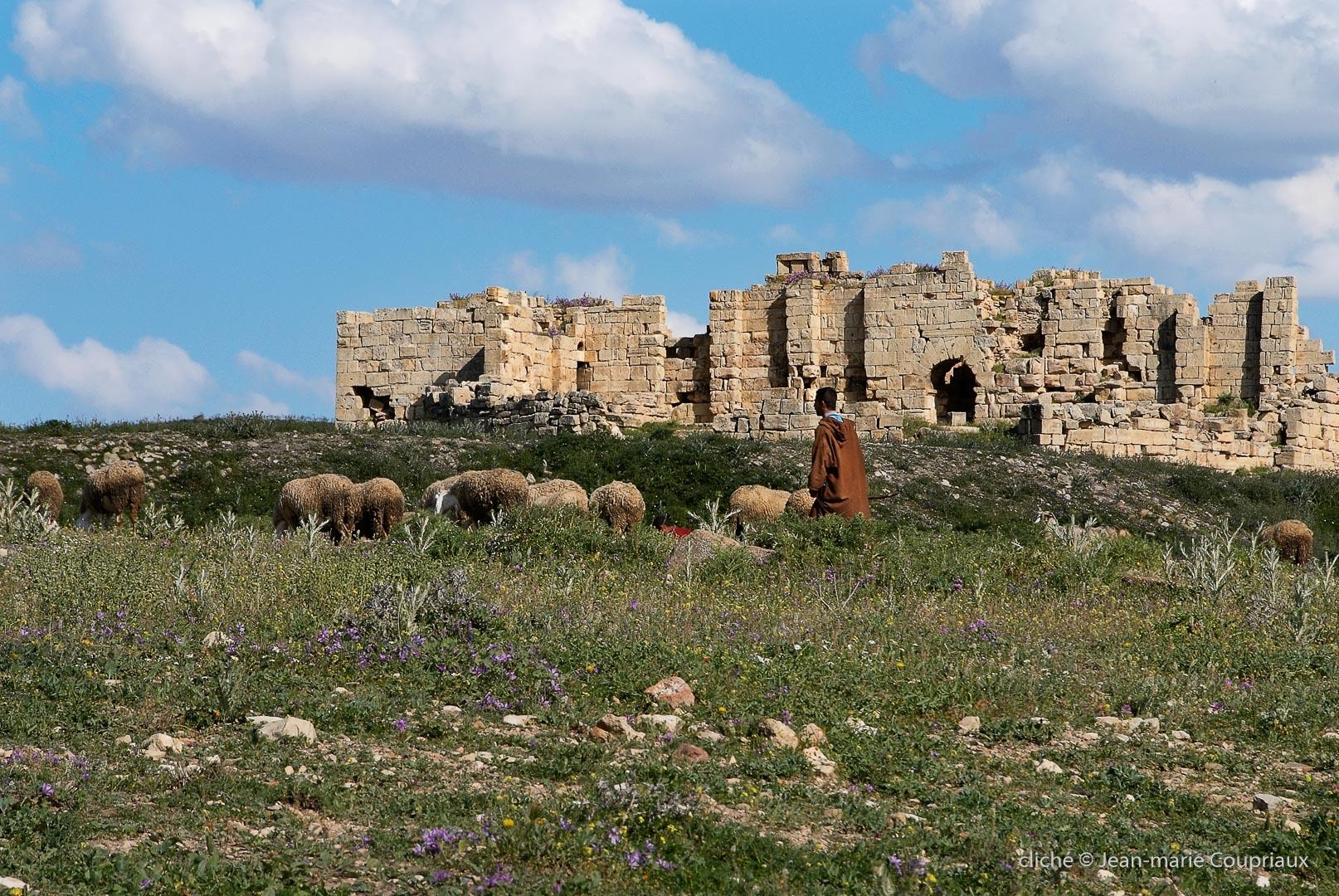 802-2011_Algerie-325