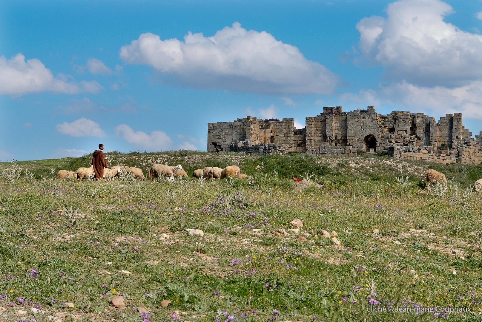 802-2011_Algerie-326