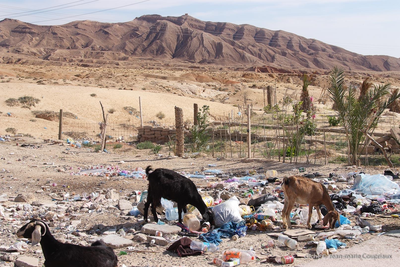 802-2011_Algerie-617