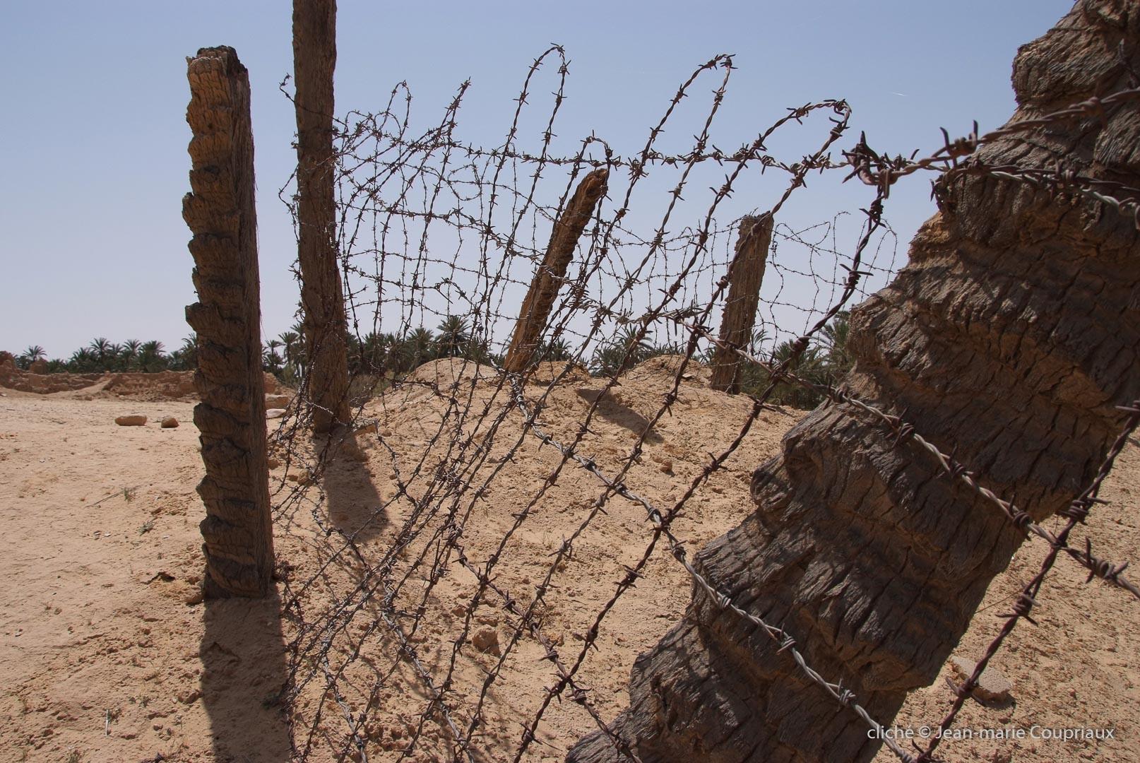 802-2011_Algerie-639