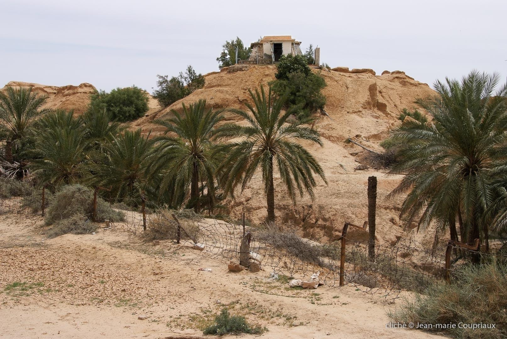 802-2011_Algerie-739