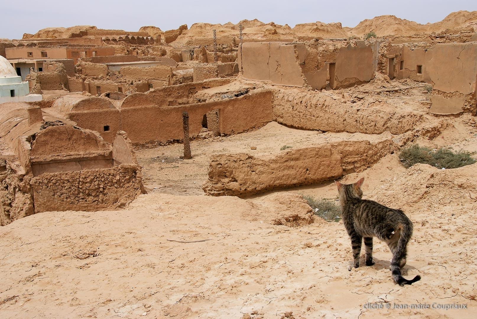 802-2011_Algerie-747
