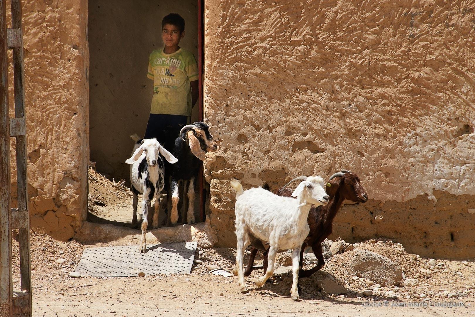 802-2011_Algerie-796
