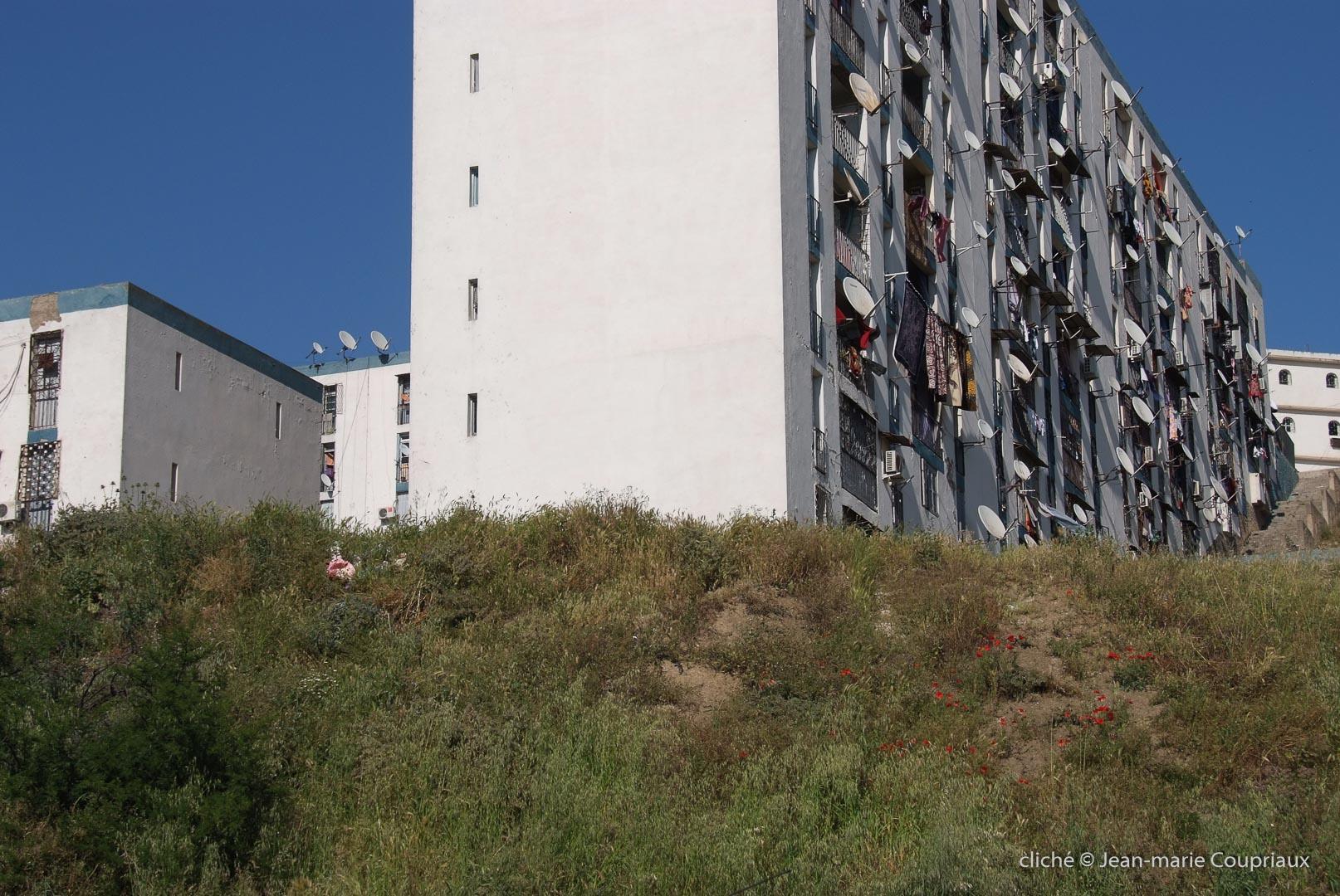 802-2011_Algerie-998