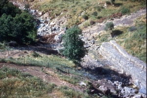 311-1958_Algerie-233