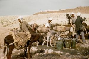 311-1958_Algerie-51