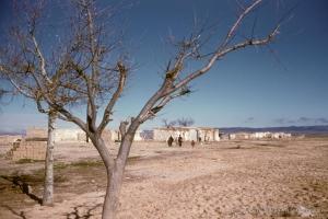 311-1958_Algerie-60