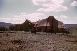 311-1958_Algerie-90