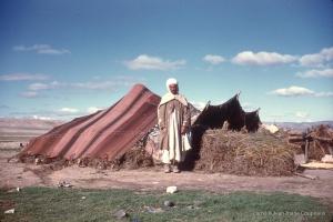 311-1958_Algerie-99