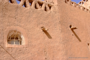 602-2007_Algerie-40-Taghit