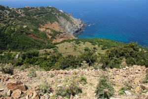 802-2011_Algerie-1218