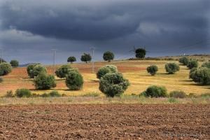 802-2011_Algerie-1379
