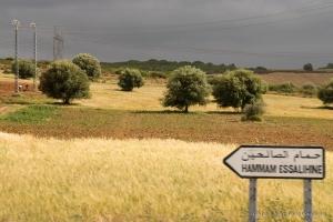 802-2011_Algerie-1381