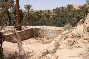 802-2011_Algerie-637