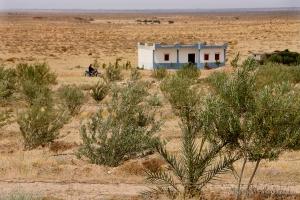 802-2011_Algerie-702