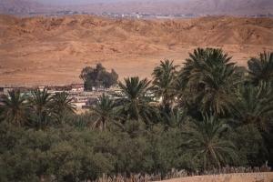 802-2011_Algerie-866