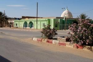 802-2011_Algerie-880