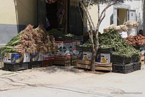 802-2011_Algerie-980