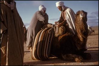 1958_Algerie-146