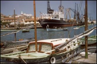 1958_Algerie-162