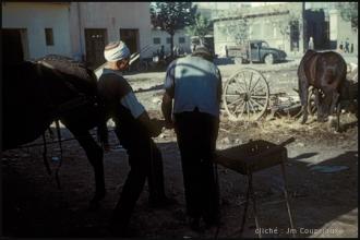 1958_Algerie-197