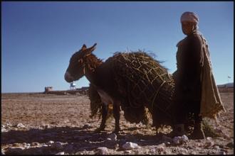 1958_Algerie-86