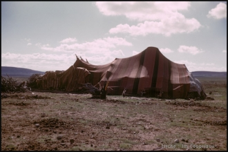1958_Algerie-90