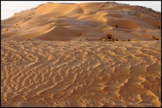 2007_Algerie-215