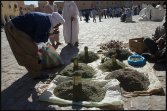 2007_Algerie-233