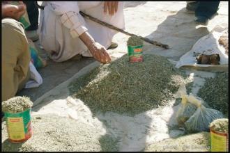 2007_Algerie-234