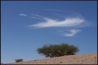 2007_Algerie-583