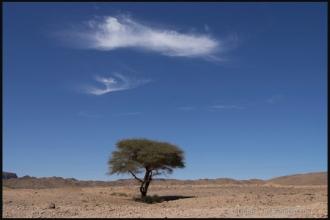 2007_Algerie-584