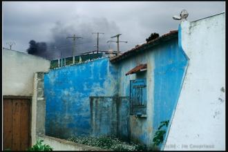 2011_Algerie-1353