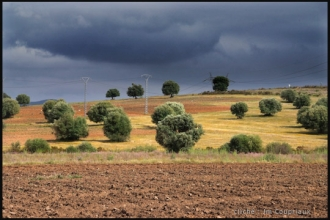 2011_Algerie-1379