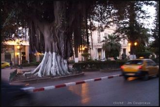 2011_Algerie-151