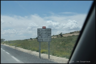 2011_Algerie-415